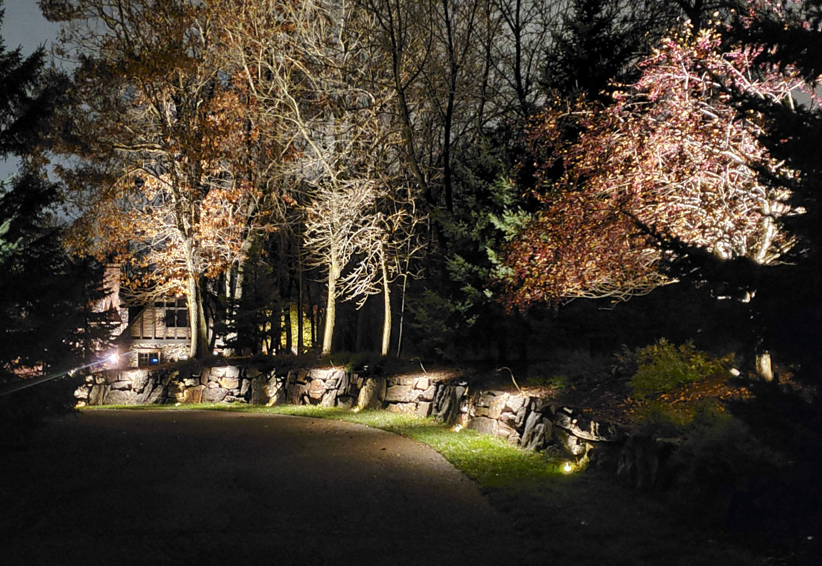 Blog-Skips- Landscape Lighting